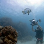 Gary Arndt - Great barrier reef
