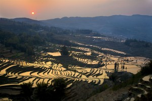 Cultural Landscape of Honghe Hani Rice Terraces