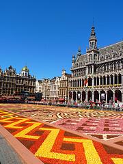 A grand flower carpet adorns the Grand Place