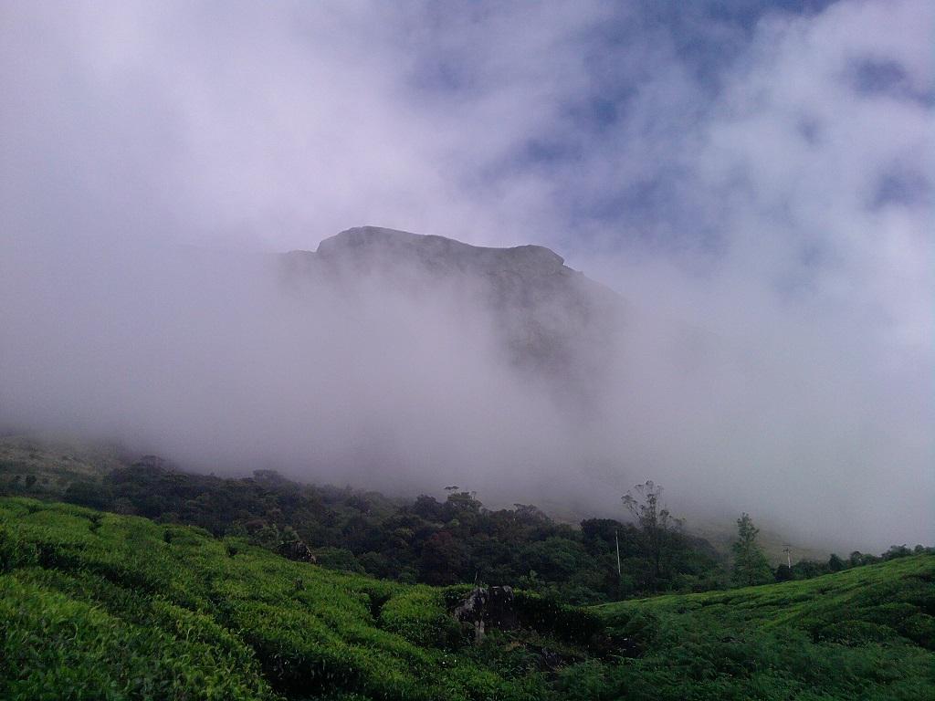 Mountain Mist at Munnar, Kerala.