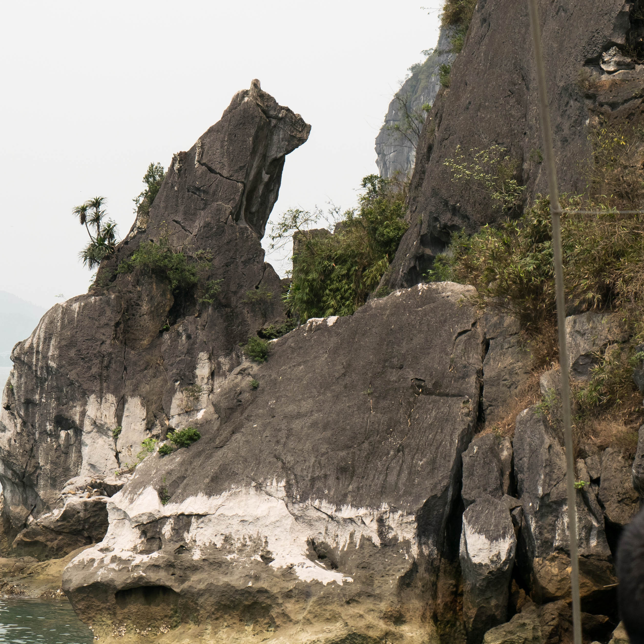 Dog Rock Ha long bay vietnam