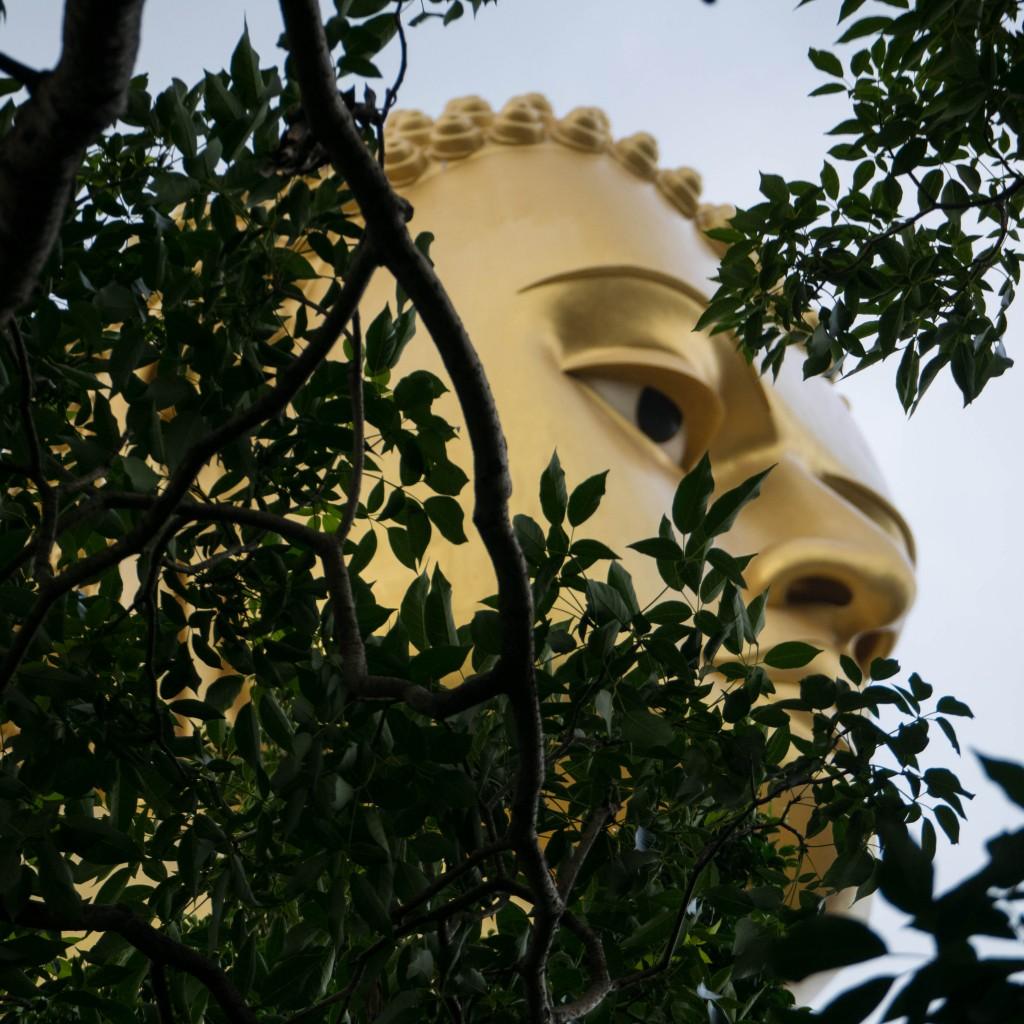 Peeping Buddha Golden Temple of Dambulla - Sri Lanka paul brooks