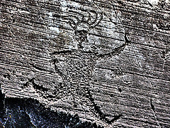 Vast collection of rock drawings in Valcamonica