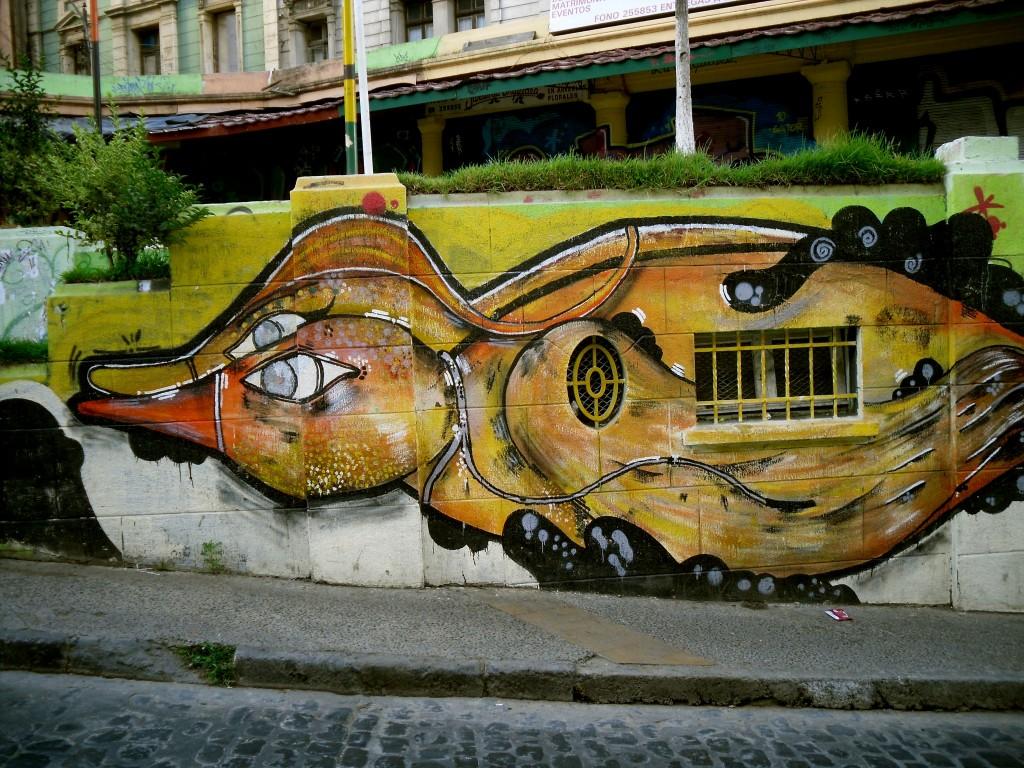 Valparaíso canars
