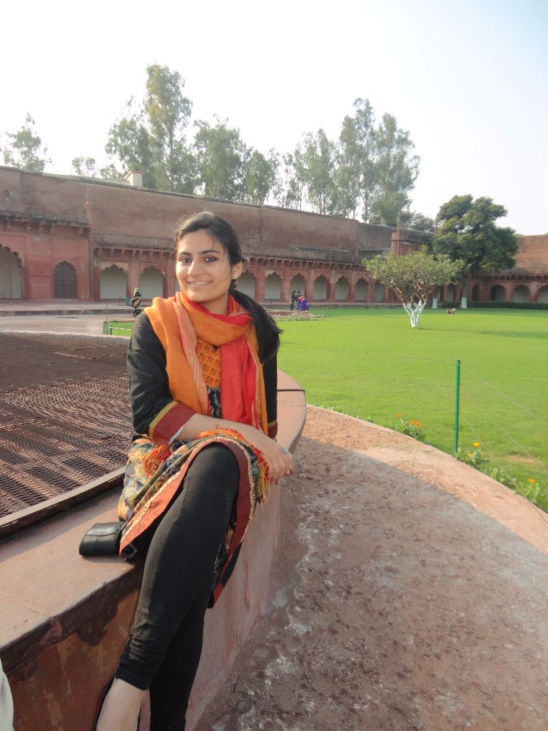 Agra fort Parul
