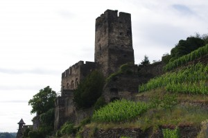 Castles, Wine, and More Castles