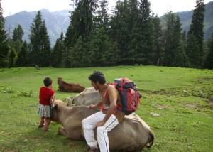 Trekking in Bhallan forest of GHNP