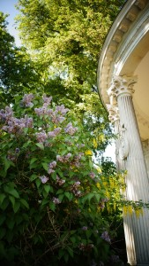 Palaces Gardens in Potsdam