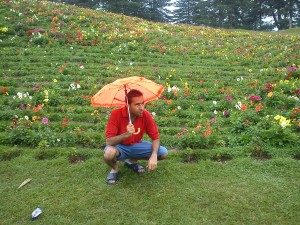 Valley of Flowers, Uttaranchal, India