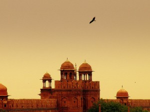 Saad_Akhtar_-_Red_Fort