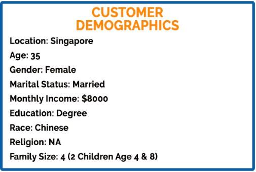 Customer Avatar Demographics