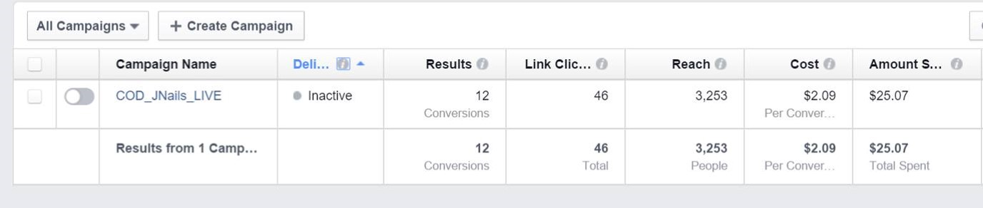 Good Facebook Campaign Results Example 2