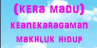"""RPP KEANEKARAGAMAN MAHLUK HIDUP """"KERA MADU"""""""