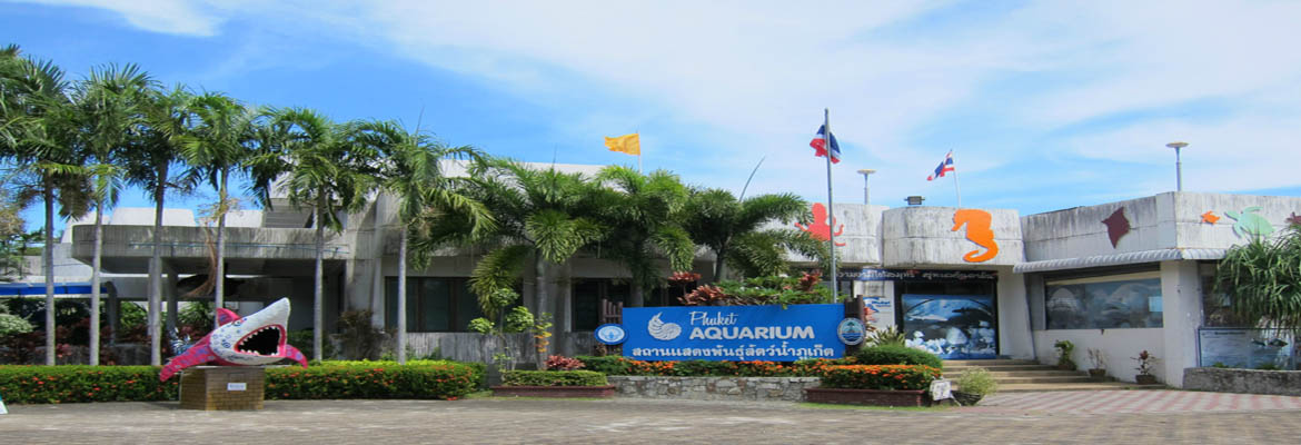 Phuket Aquarium , Patong-beach  HalalTrip