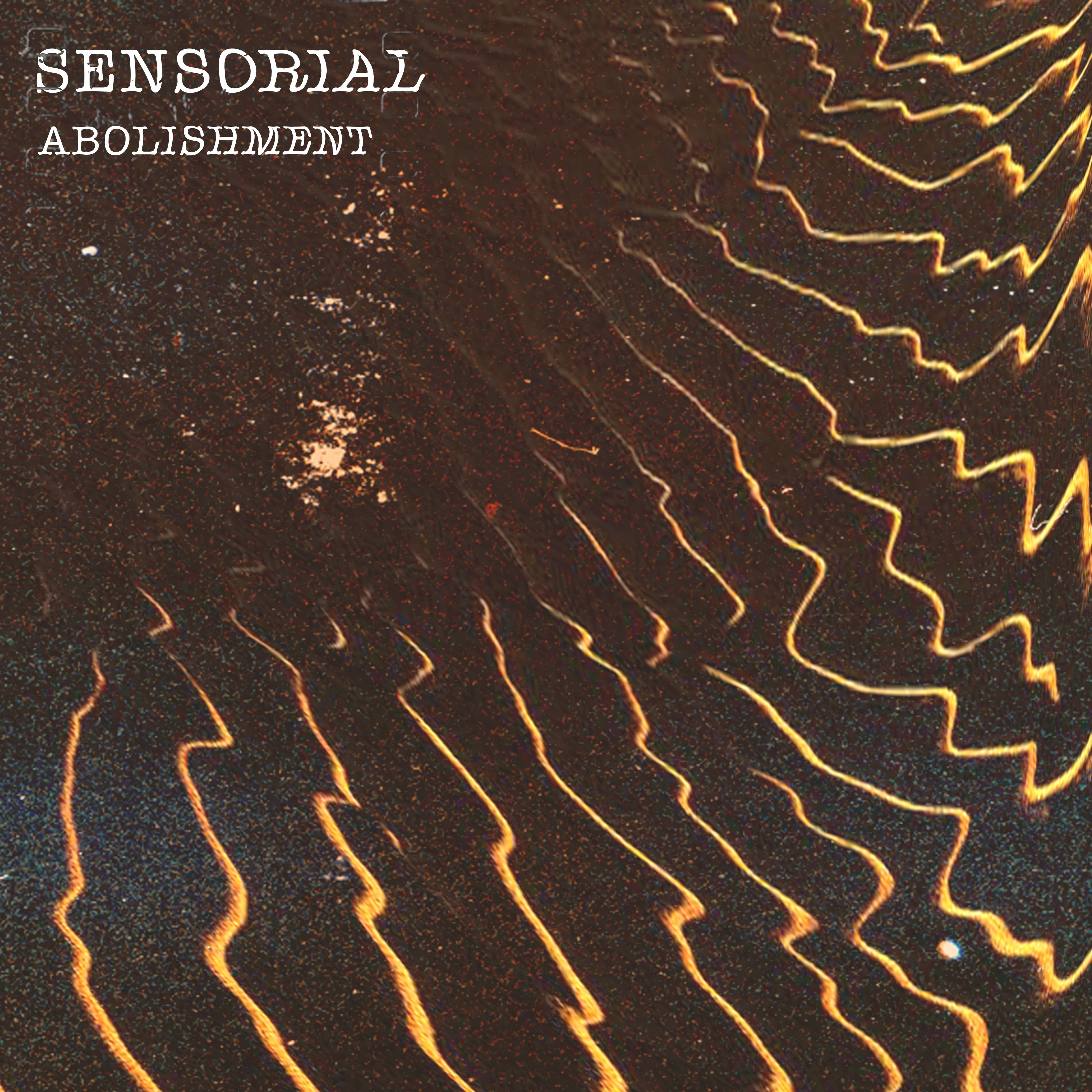 Sensorial abolishment resized
