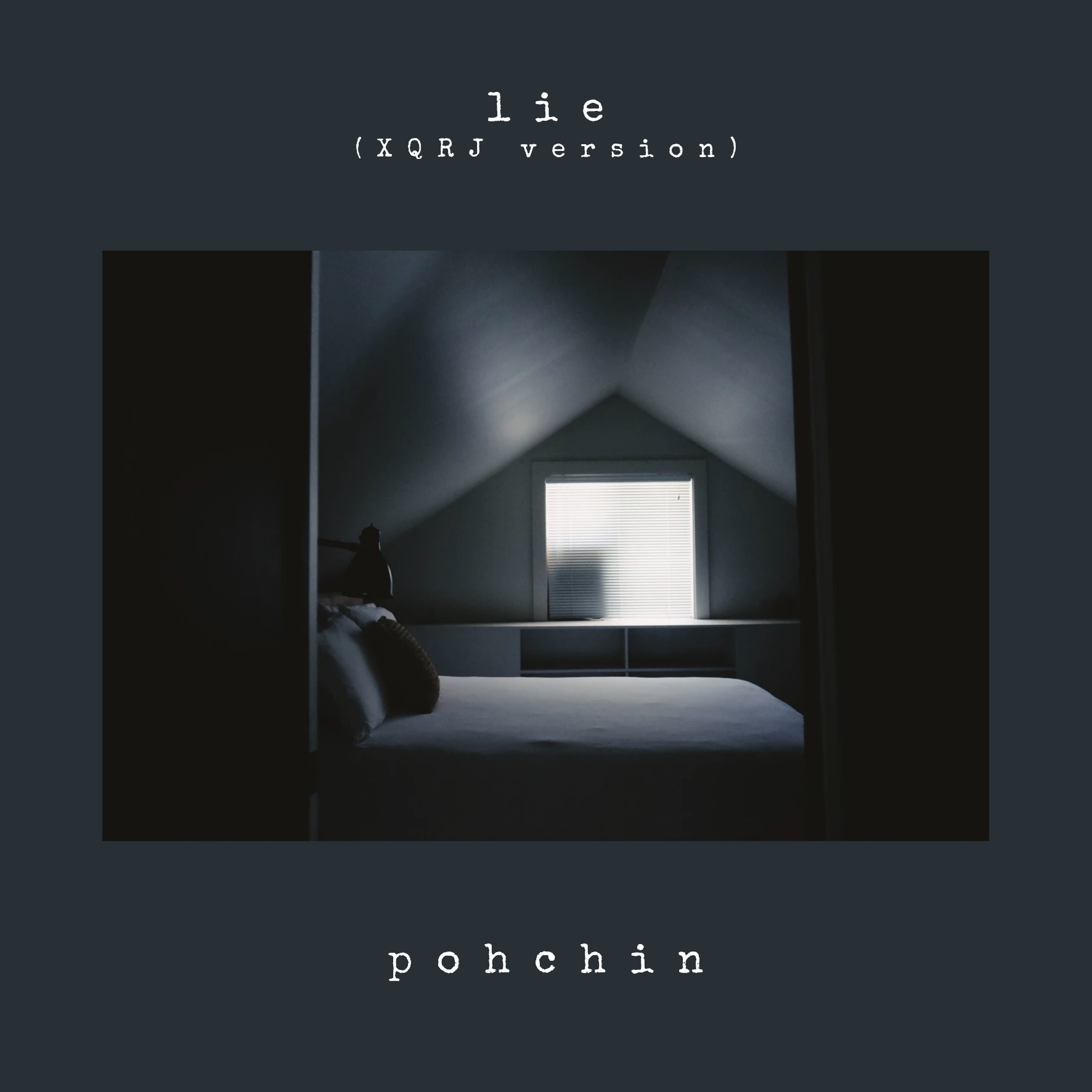 Lie cover art gray