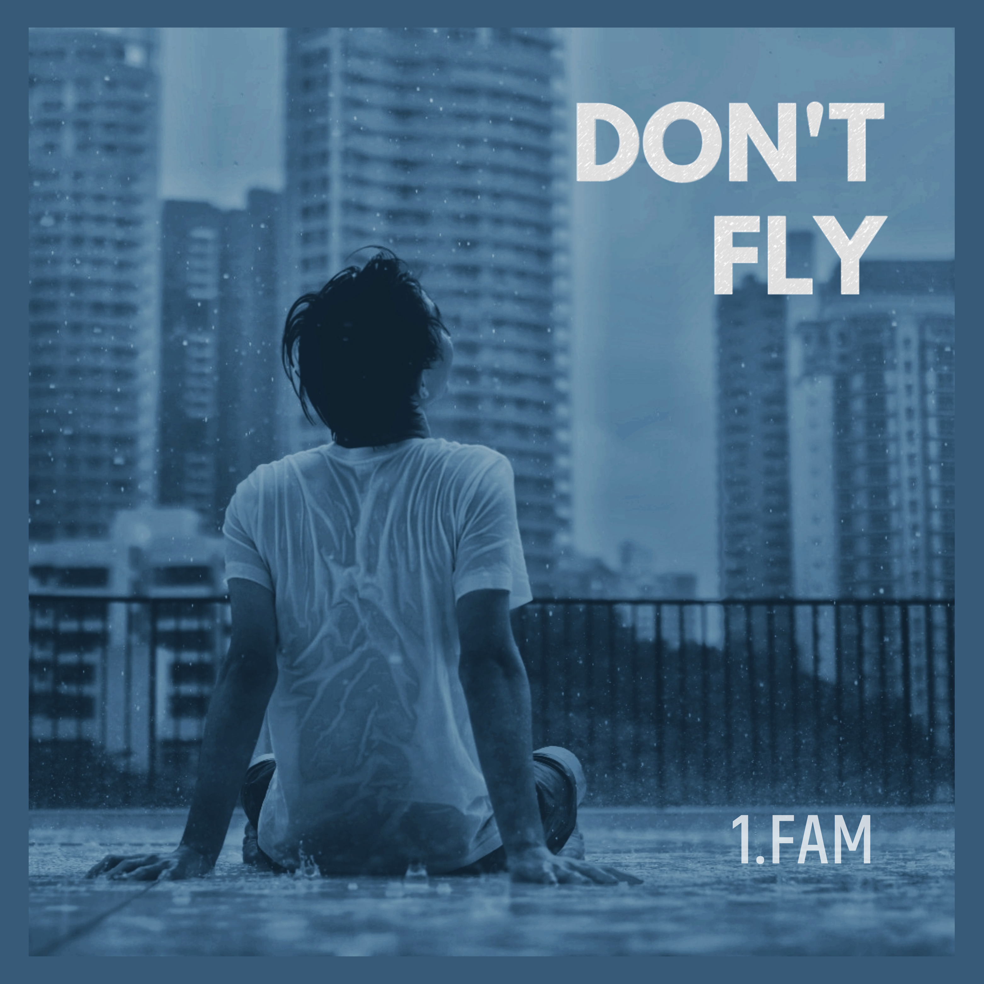 Don't fly cover art %28final%29 %281%29