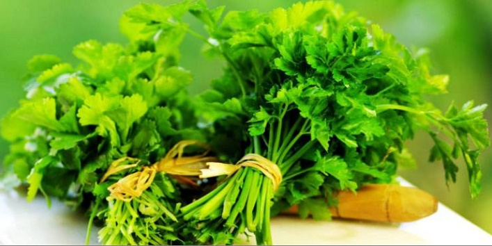Natural remedies to keep your kidneys clean 1
