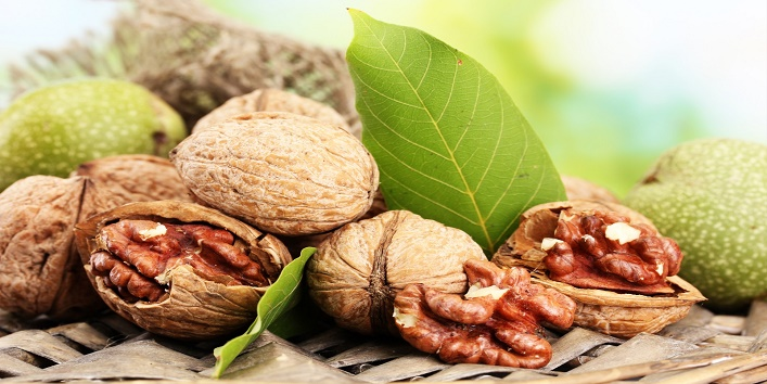 Walnuts and Healthy Diet4