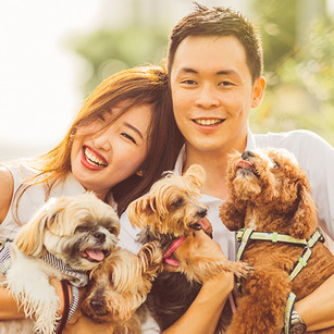 6 Beautiful Dog-friendly Wedding Venues In Singapore for that Pawfect Wedding