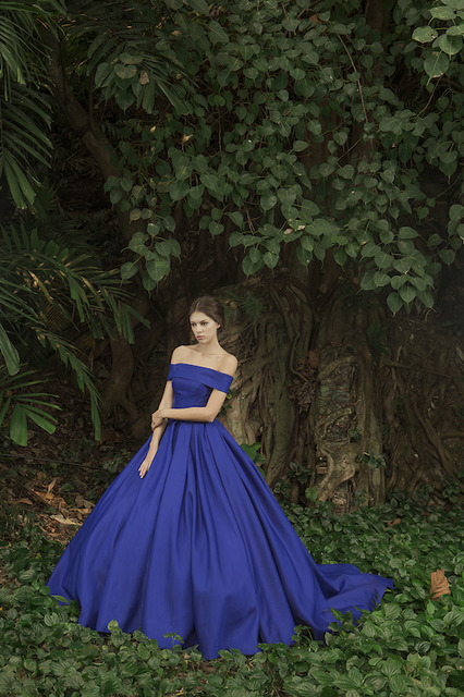 Evening Gowns Collection I