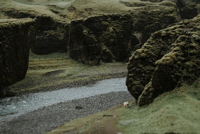Icelandic Elopement
