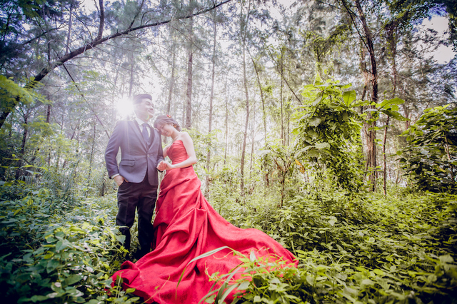 Pre-Wedding (Singapore) III