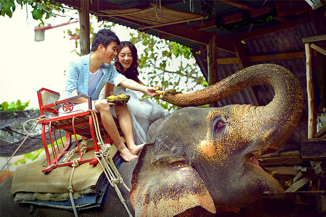 Pre-Wedding (Phuket)