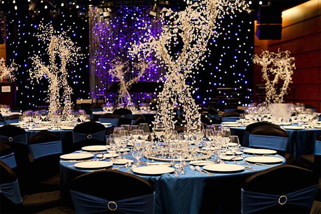 The Star Gallery - Starry Night Theme Wedding