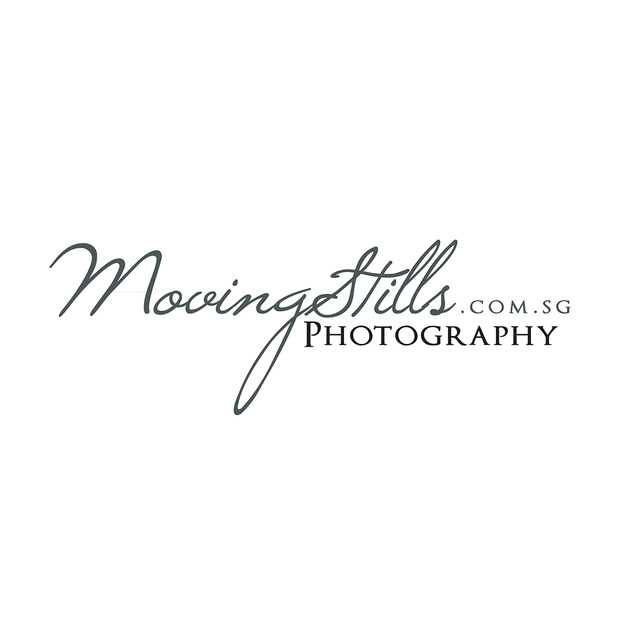 Movingstills logo %28web%29