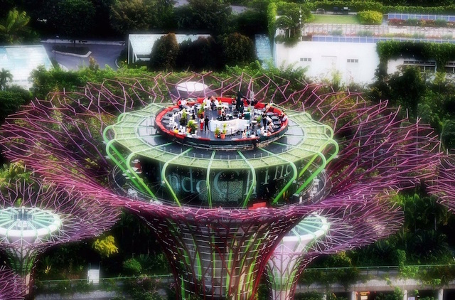SuperTree Restaurant @ Gardens by the Bay