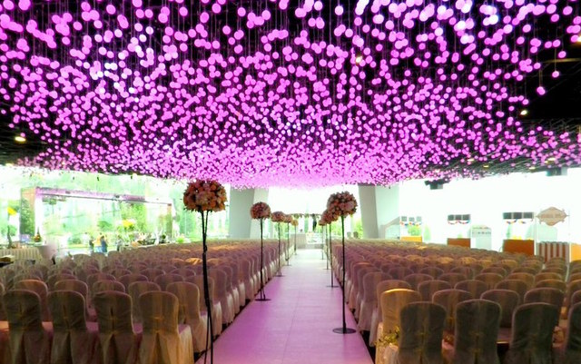 Flower Field Hall