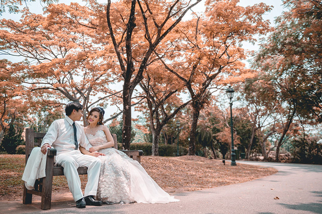 Pre-Wedding Makeup & Hairstyling