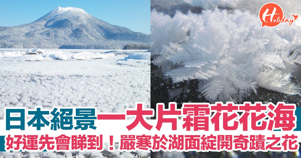 冬季限定絕景!日本嚴寒於湖面綻開  壯觀奇蹟之花「霜花」花海   好運先會睇到~
