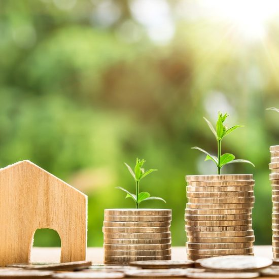 property-value-investment-land-appreciation-property-market