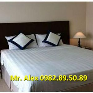 Amazing cheap apartment for rent in D1 Saigon