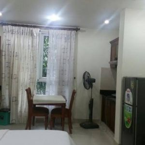 500$ new serviced apartment for rent in Phu My Hung