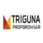 Triguna Projects