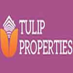 Tulip Properties