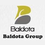 Baldota group   logo