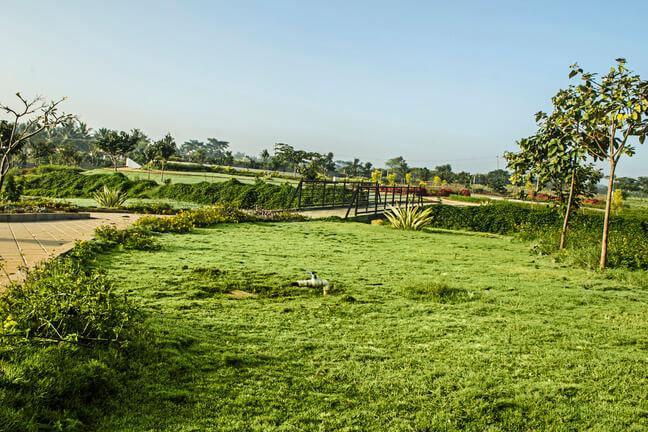 KNS Anirvan Plot Nagarabhavi Bangalore 12233