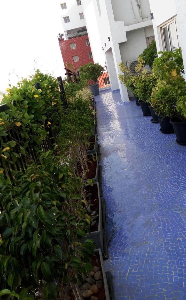 SPR Osian Chlorophyll Porur Chennai 12981