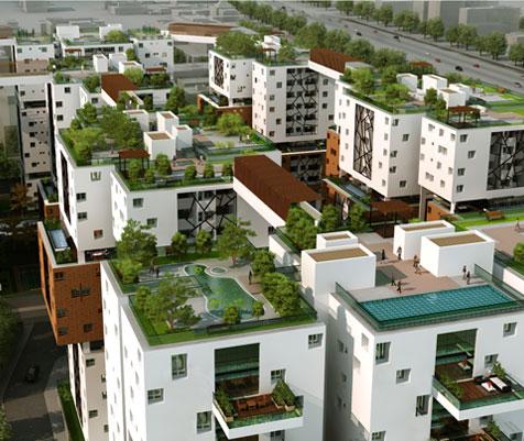 SPR Osian Chlorophyll Porur Chennai 12992