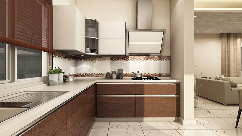 CoEvolve Northern Star kitchen