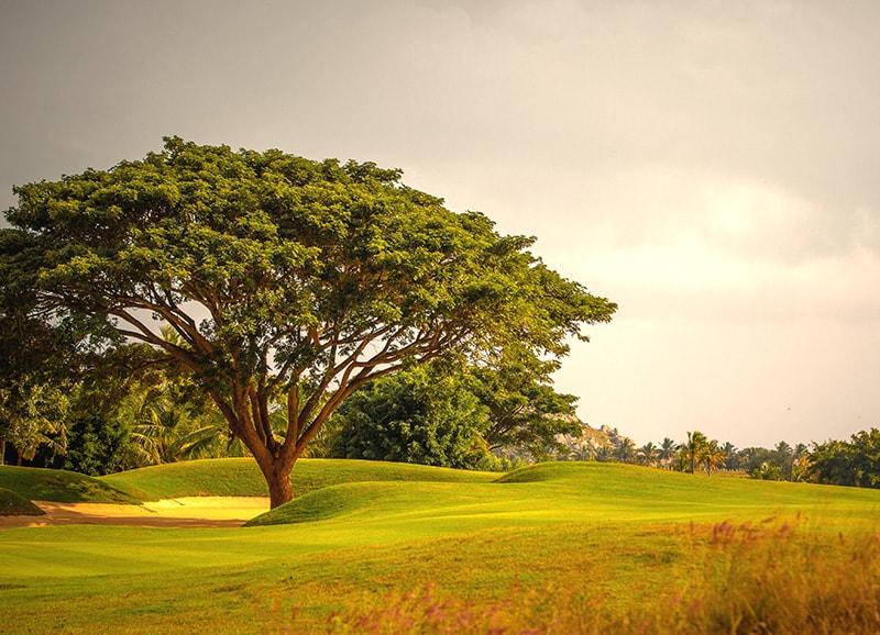 Prestige Golfshire Villa Nandi Hills Bangalore 15095