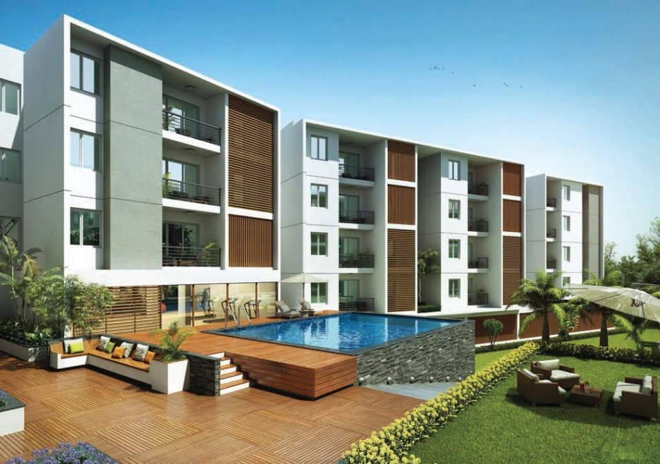 Tulive Viha Anna Nagar Chennai 6793