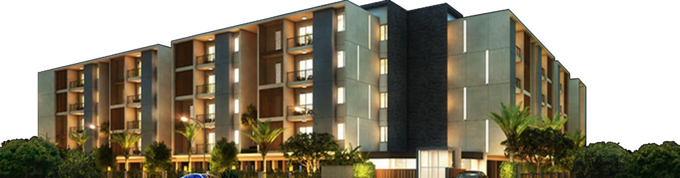 Tulive Viha Anna Nagar Chennai 6795
