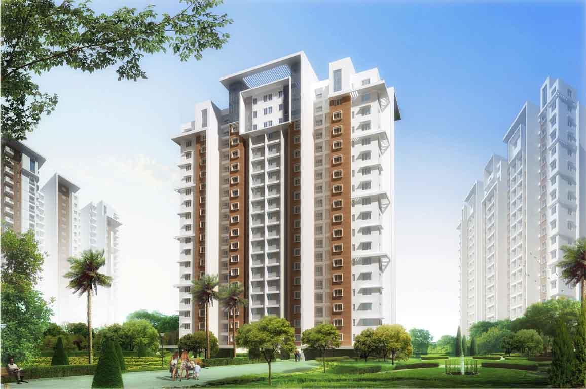 Doshi Risington Karappakam Chennai 8151