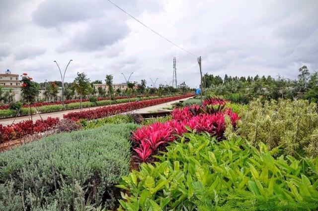 Nambiar Bellezea Villa Sarjapur Road Bangalore 9393