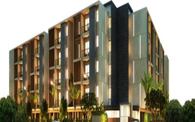 Tulive Viha Anna Nagar Chennai